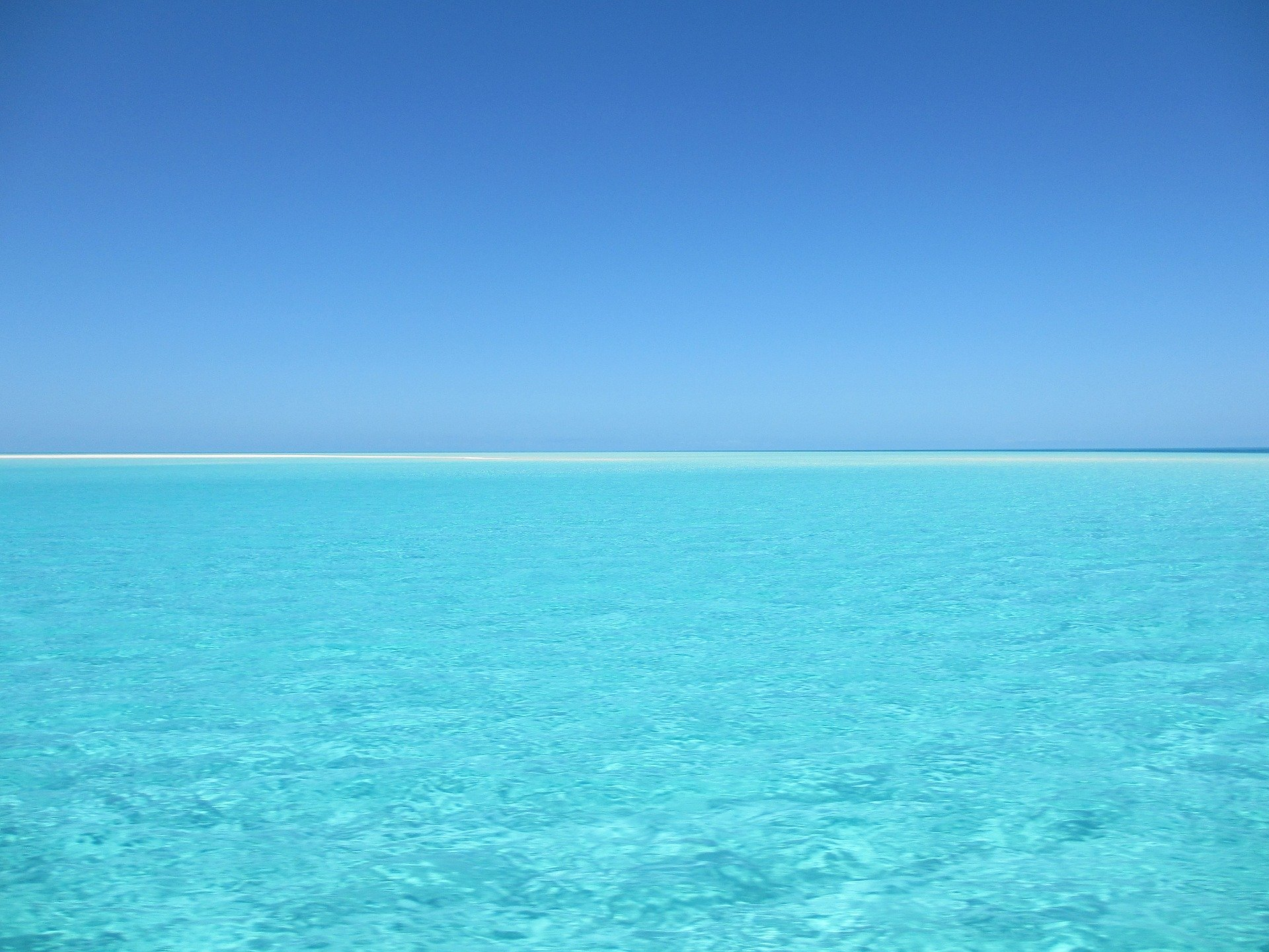 Blue Ocean Strategy: A Roadmap on How to Be the Good Kind of Different