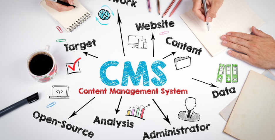 Which CMS is better for my business: WordPress or Drupal | Pros & Cons Of Each CMS