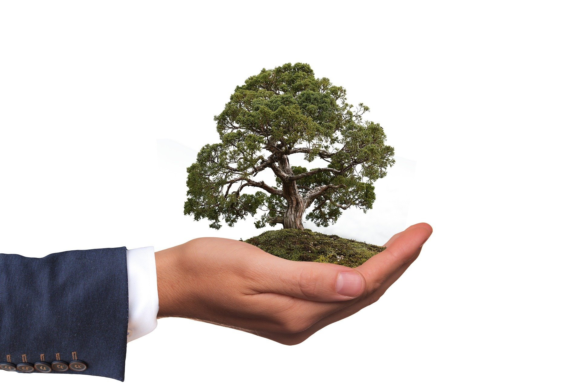 Why Your Business Needs an Environmental-Responsibility Statement for 2021